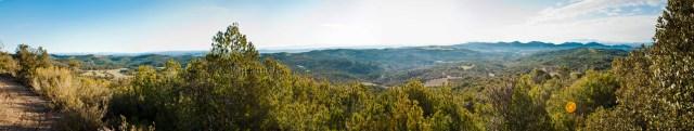 Vistes des del Bosc dels Olivers