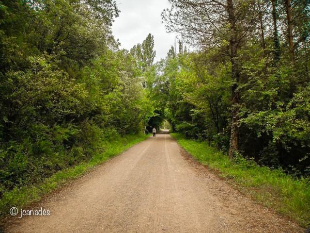 Via Verda del Llobregat
