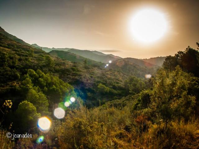 Surt el Sol a El Borrell